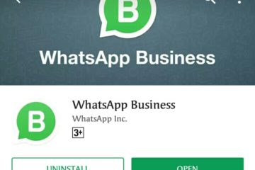 WhatsApp Business Application launch in India