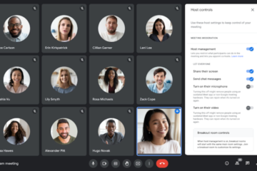 Google Meet hosts can now mute participants, turn their cameras off